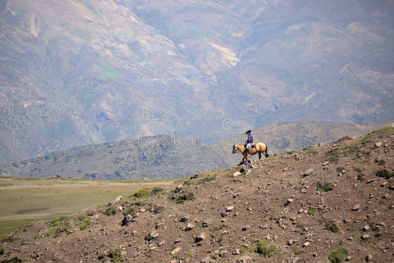 Mens op horseback in de Chileense Andes royalty-vrije stock foto's