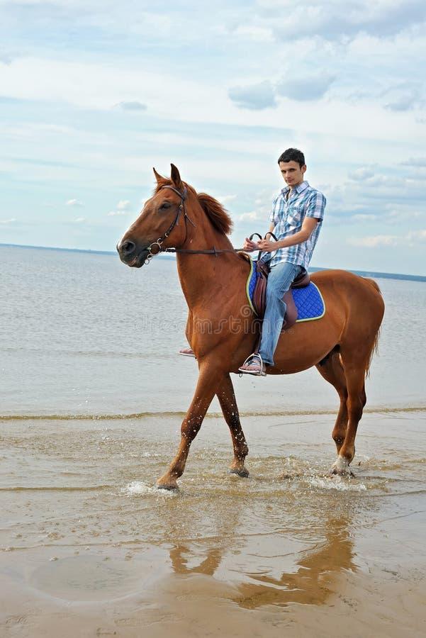 Mens op paard stock fotografie