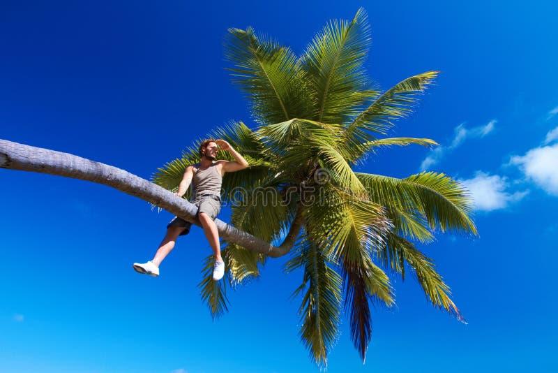 Mens op Palm stock foto