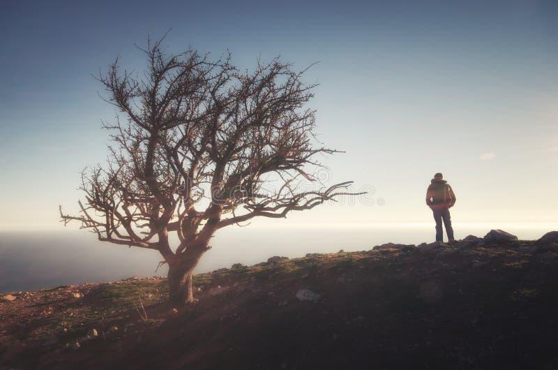 Mens op piek van berg royalty-vrije stock fotografie