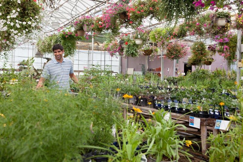 Mens op tuincentrum royalty-vrije stock fotografie