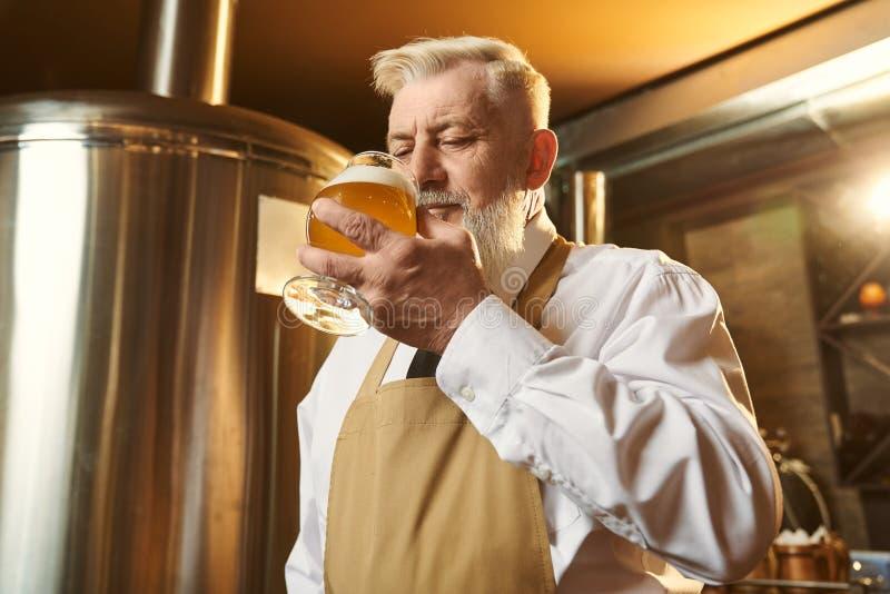 Mens in overhemd en schort die zich in brouwerij en proevend bier bevinden stock afbeeldingen