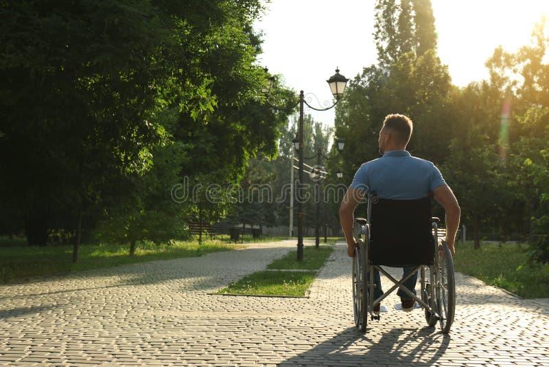 Mens in rolstoel bij park op zonnige dag Voor tekst Grappige kat en muis royalty-vrije stock foto's