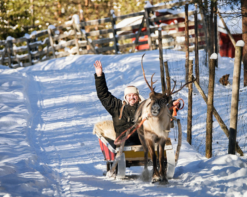 Mens terwijl de rit van de rendierslee in de winter Rovaniemi Noordelijk Finland stock afbeelding