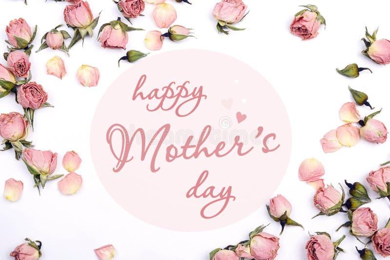 Mensagem do cumprimento do dia de mães com as rosas cor-de-rosa pequenas na parte traseira do branco fotos de stock royalty free