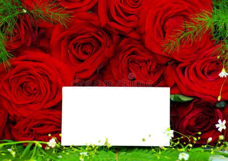 Mensagem em rosas fotos de stock