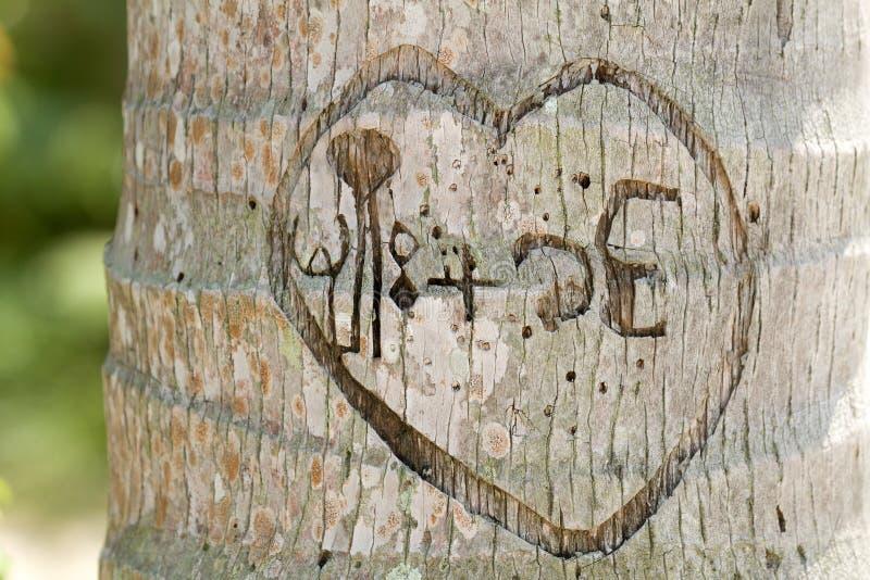 Mensaje del amor fotografía de archivo