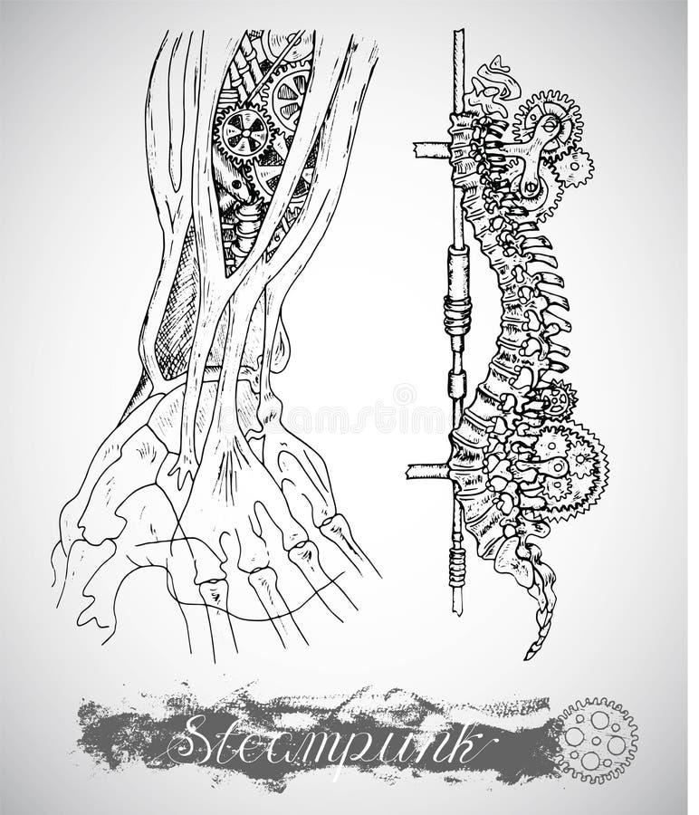 Menschliche Anatomiehand und -rückgrat mit Weinlesemechanismus in der Dampfpunkart stock abbildung