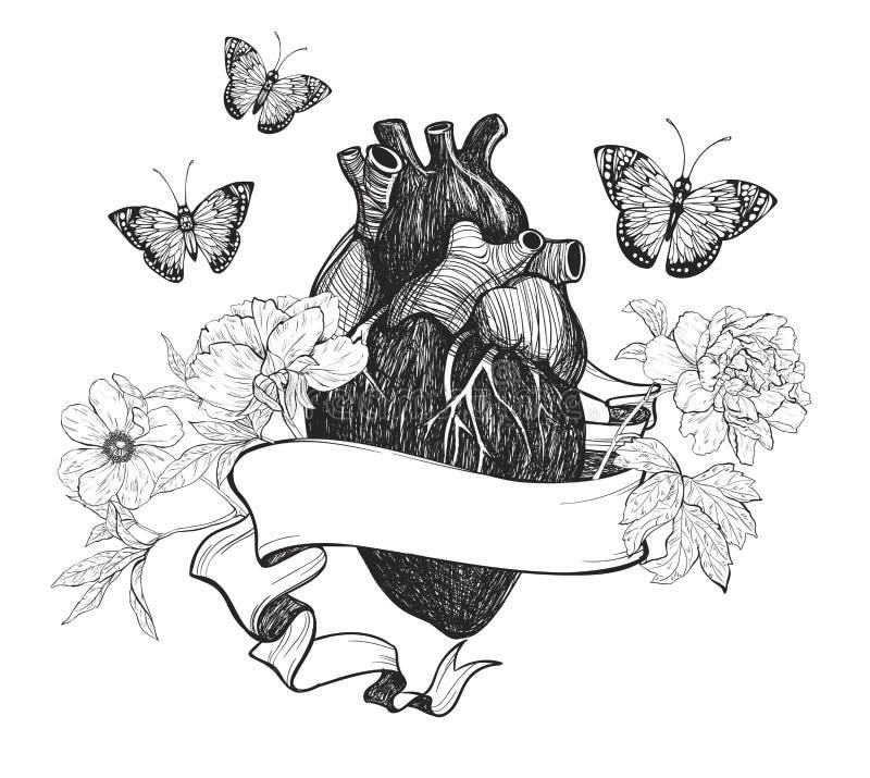 Menschliche Anatomische Herz Whith Blumen Vektor Abbildung ...
