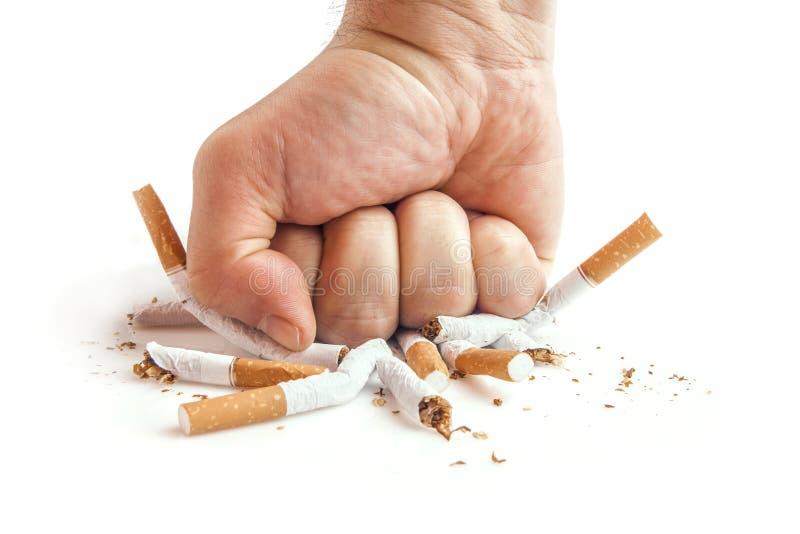 Menschliche Faust, die Zigaretten auf weißem Hintergrund bricht lizenzfreie stockbilder