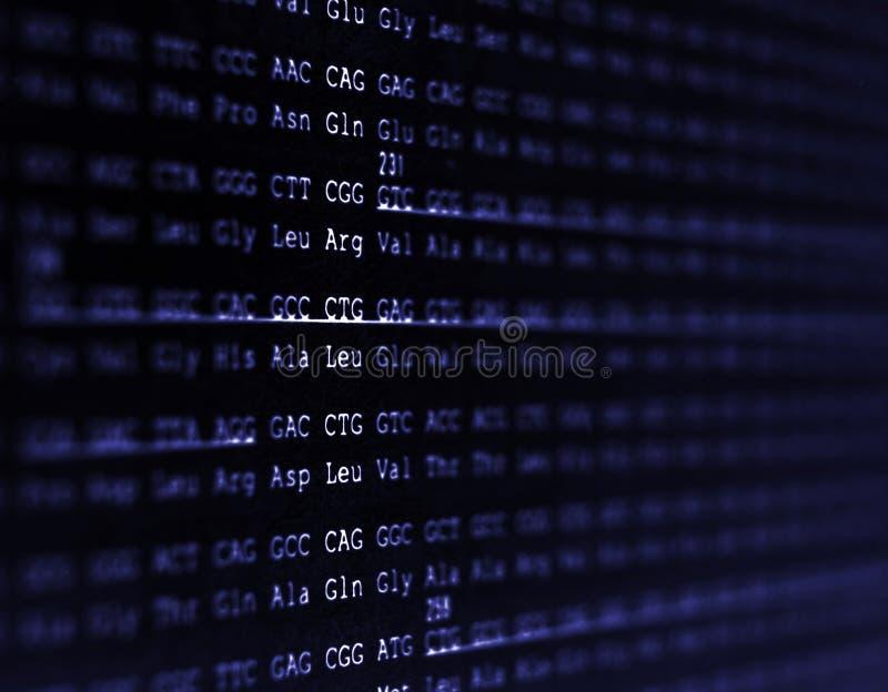 Menschliche Genomreihenfolge stockfotos
