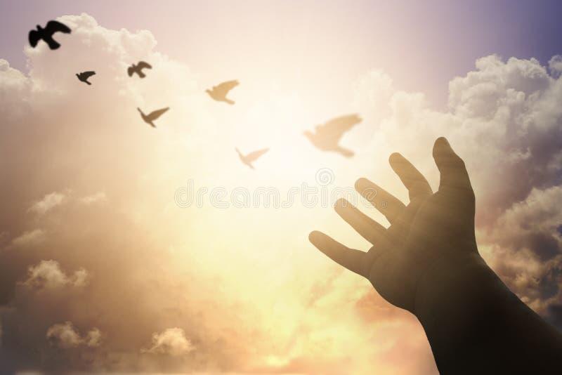 Menschliche Hände öffnen hohe Anbetung der Palme Therapie des heiligen Abendmahl segnen Gott er stockfotos