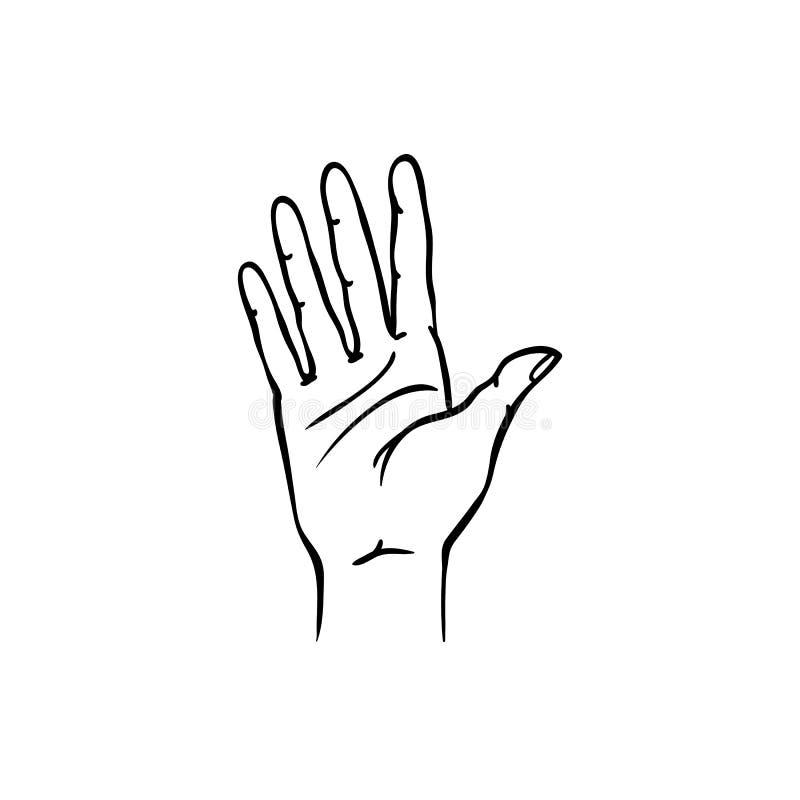 Menschliche Hand, die fünf Finger in der Skizzenart lokalisiert auf weißem Hintergrund zeigt vektor abbildung