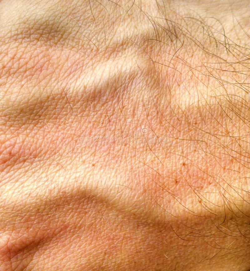Menschliche Handhaut lizenzfreie stockfotografie