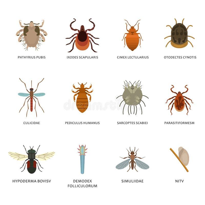Parasiten Arten