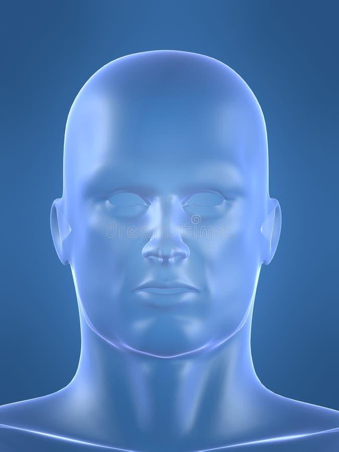 Menschliche männliche Form stock abbildung