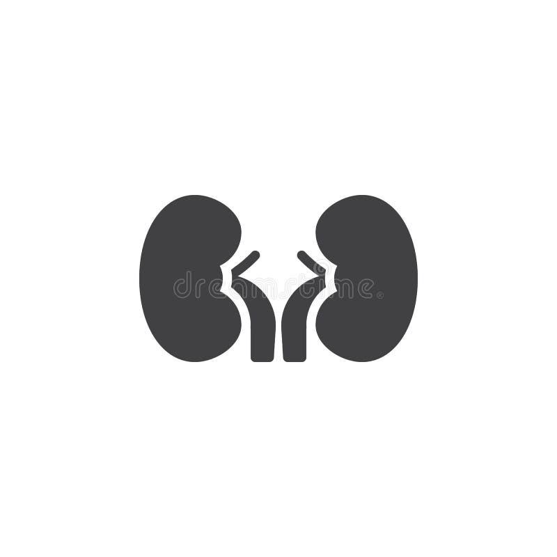 Menschliche Nierenvektorikone lizenzfreie abbildung