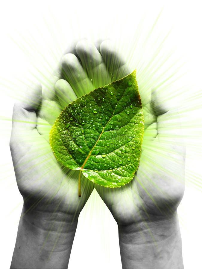 Menschliche Rolle im Umweltschutz stockbilder
