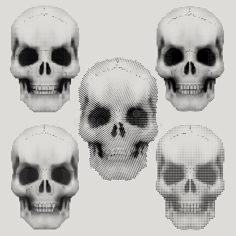 Menschliche Schädel in der Weinlesehalbtonart vektor abbildung