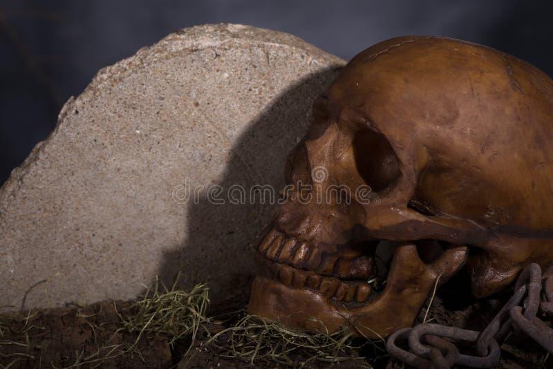 Menschlicher Halloween-Schädel lizenzfreie stockfotografie