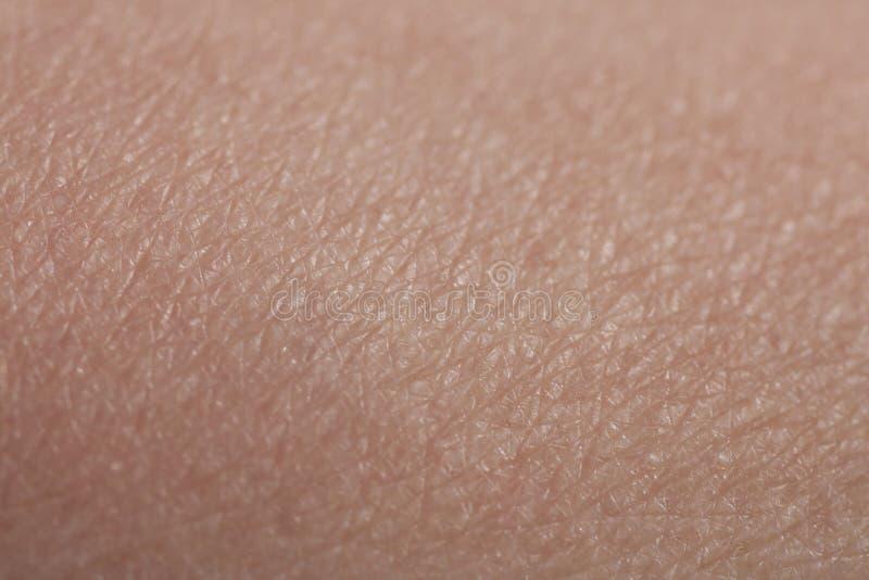 Menschlicher Haut-Unterarm lizenzfreie stockbilder