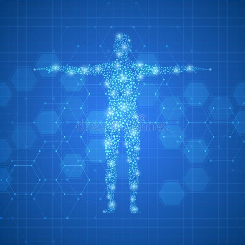 Menschlicher Körper mit Moleküle DNA auf medizinischem abstraktem Hintergrund stock abbildung