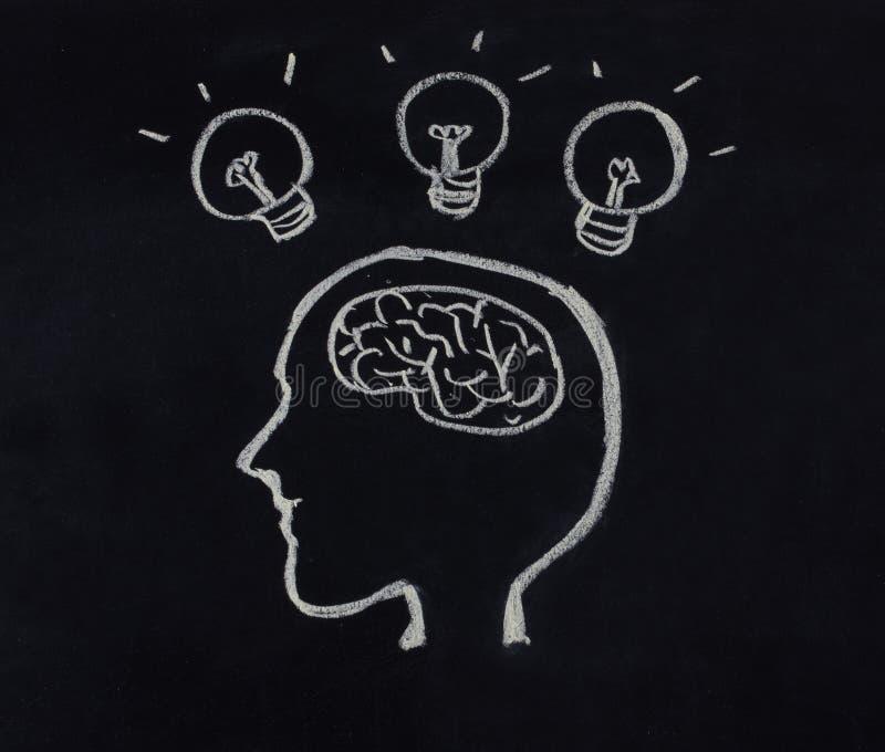 Menschlicher Kopf, Gehirn und Glühlampe im Ideenkonzept stockfotos