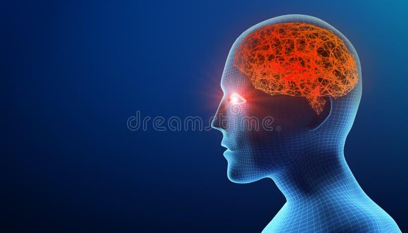 Menschlicher Kopf mit Gehirn Alzheimer-` s Krankheit Wireframe-Modell vektor abbildung