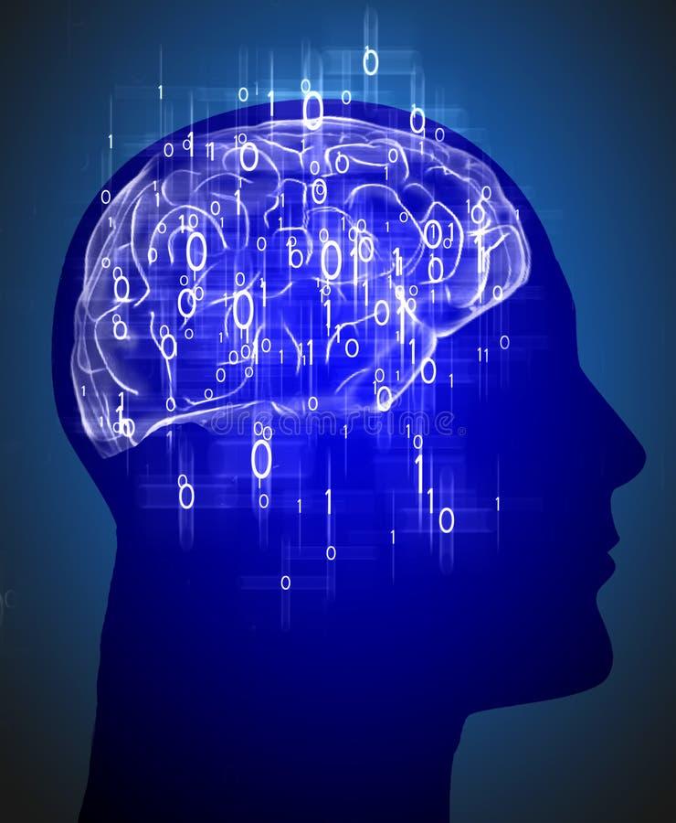 Menschlicher Kopf mit Gehirn und binär Code lizenzfreie abbildung