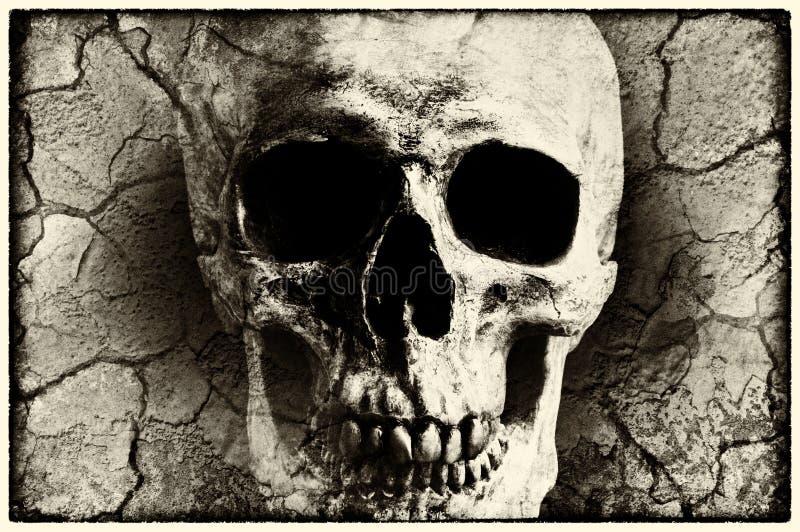 Menschlicher Schädel gemischt mit Schmutzbeschaffenheit stockfotografie
