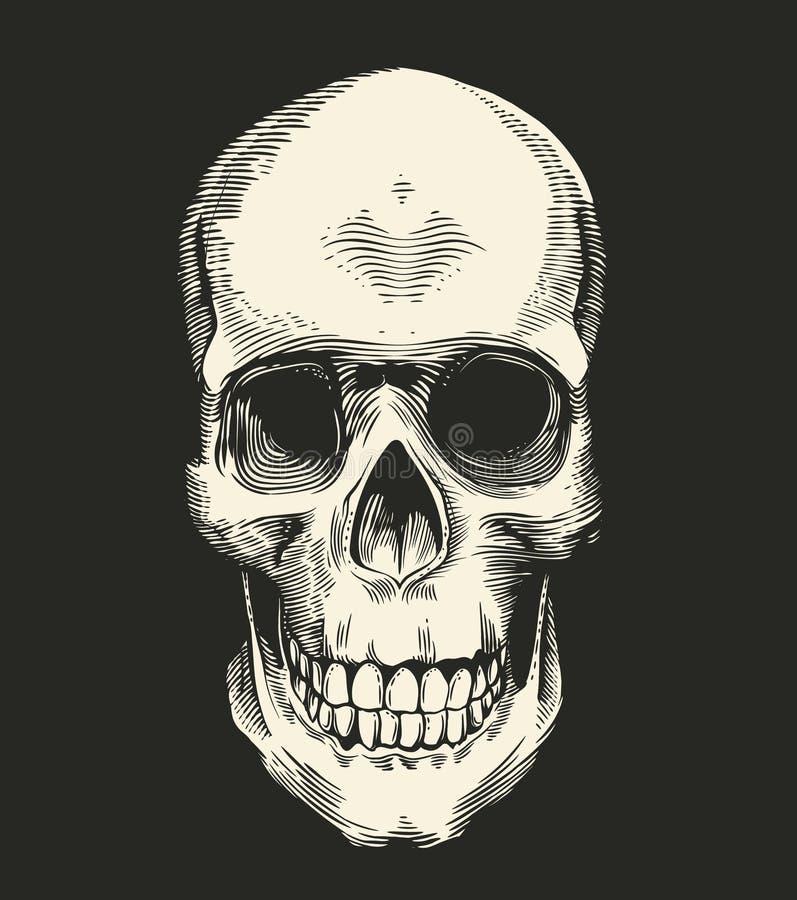Menschlicher Schädel gezeichnet in Retro- Radierungsart auf schwarzem Hintergrund, Vorderansicht Konzept des Horrors und des Übel lizenzfreie abbildung