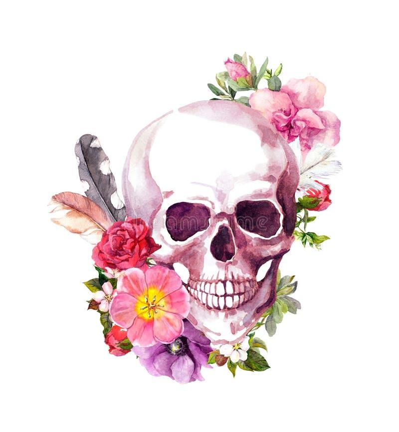 Menschlicher Schädel mit Blumen, Federn in Weinlese boho Art watercolor lizenzfreie abbildung