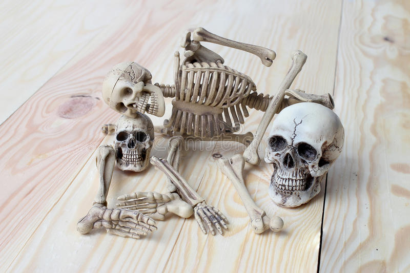 Menschlicher Schädel und menschliches Skelett auf Kiefernholzhintergrund lizenzfreie stockfotografie