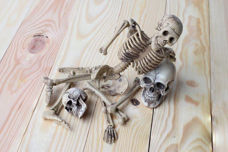 Menschlicher Schädel und menschliches Skelett auf Kiefernholzhintergrund stockfotos