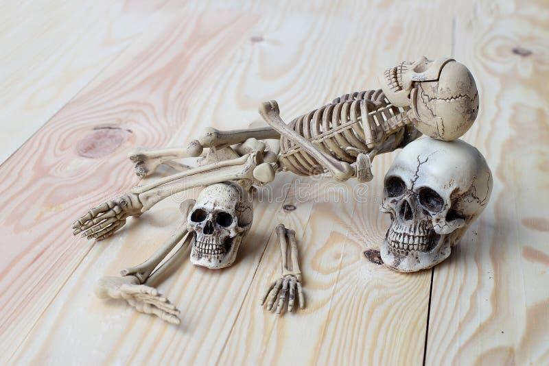 Menschlicher Schädel und menschliches Skelett auf Kiefernholzhintergrund lizenzfreie stockfotos