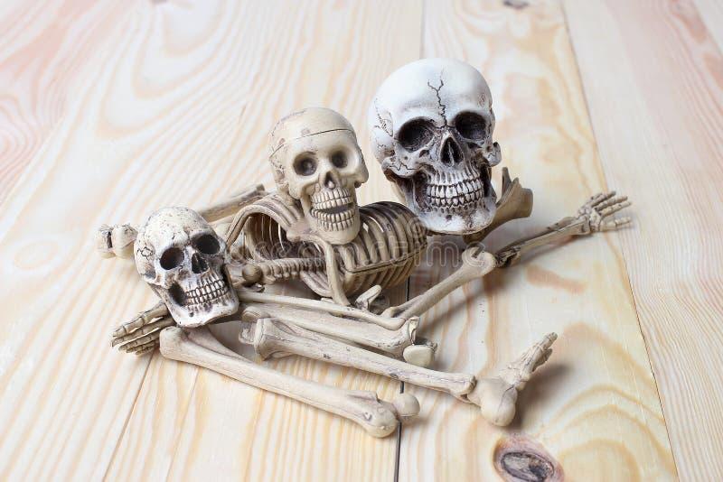 Menschlicher Schädel und menschliches Skelett auf Kiefernholzhintergrund lizenzfreie stockbilder