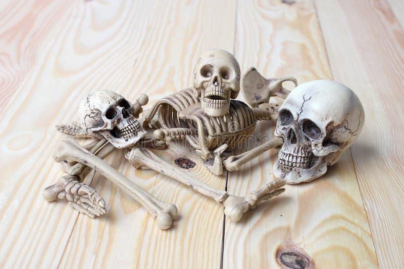 Menschlicher Schädel und menschliches Skelett auf Kiefernholzhintergrund stockfotografie