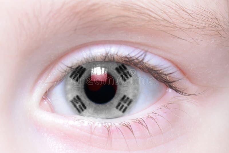 Menschliches Auge mit Staatsflagge von Südkorea lizenzfreies stockfoto
