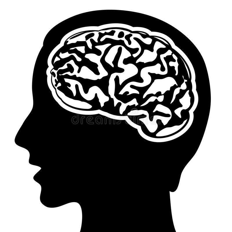 Menschliches Gehirn lizenzfreie abbildung