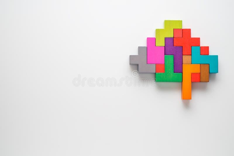 Menschliches Gehirn wird von den mehrfarbigen Holzklötzen gemacht lizenzfreie stockbilder