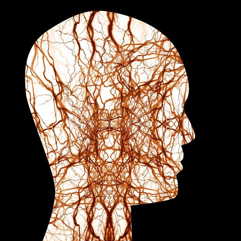 Menschliches Nervensystem stock abbildung. Illustration von nerv ...