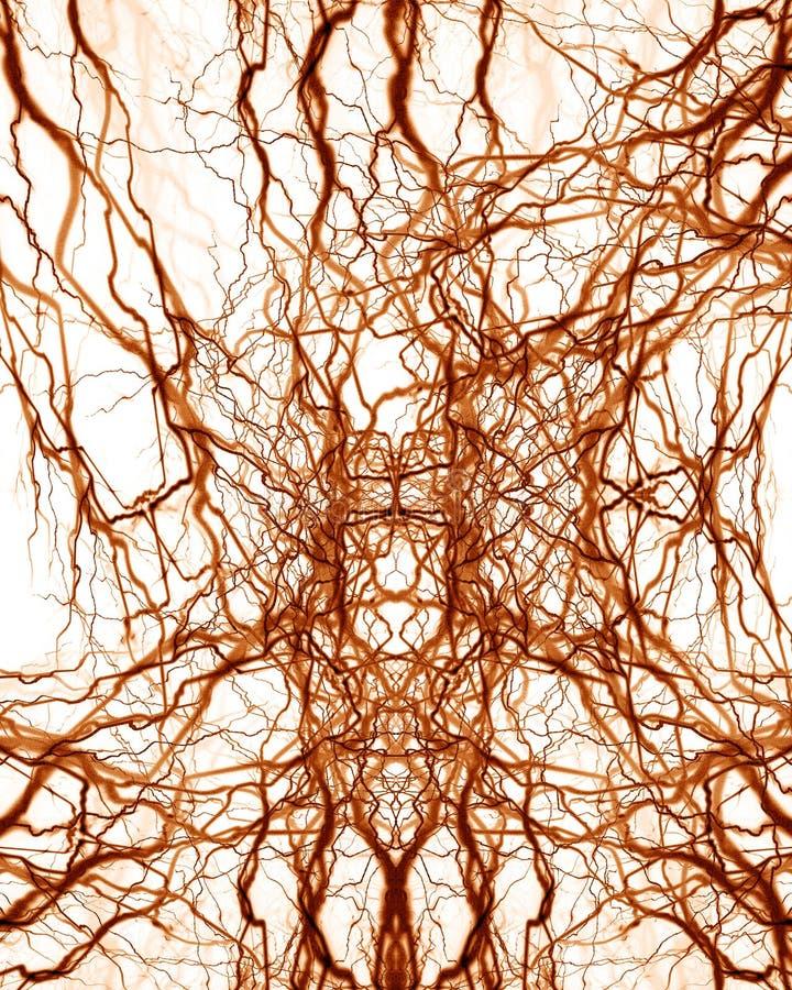 Menschliches Nervensystem stock abbildung. Illustration von lebendig ...