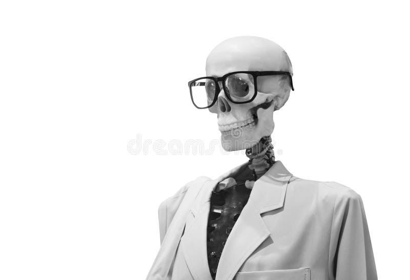 Menschliches Schädelmodell mit Gläsern und Doktor lizenzfreie stockbilder