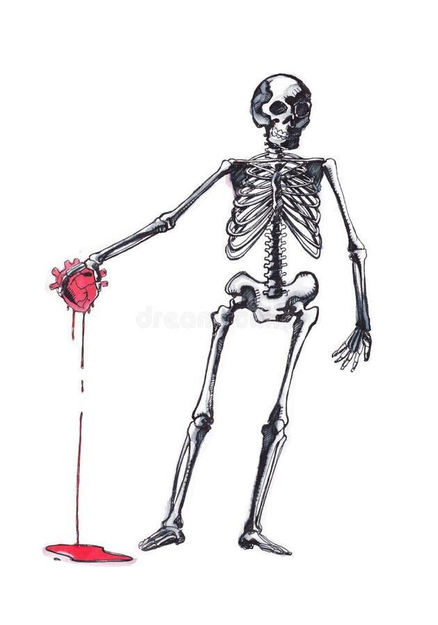 Ausgezeichnet Malvorlagen Zum Thema Menschliches Skelett Bilder ...
