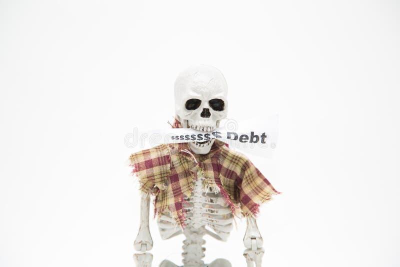 Menschliches Skelett mit Mitteilungstag in seinen Kiefern auf hellgrauem Hintergrund lizenzfreie stockfotografie