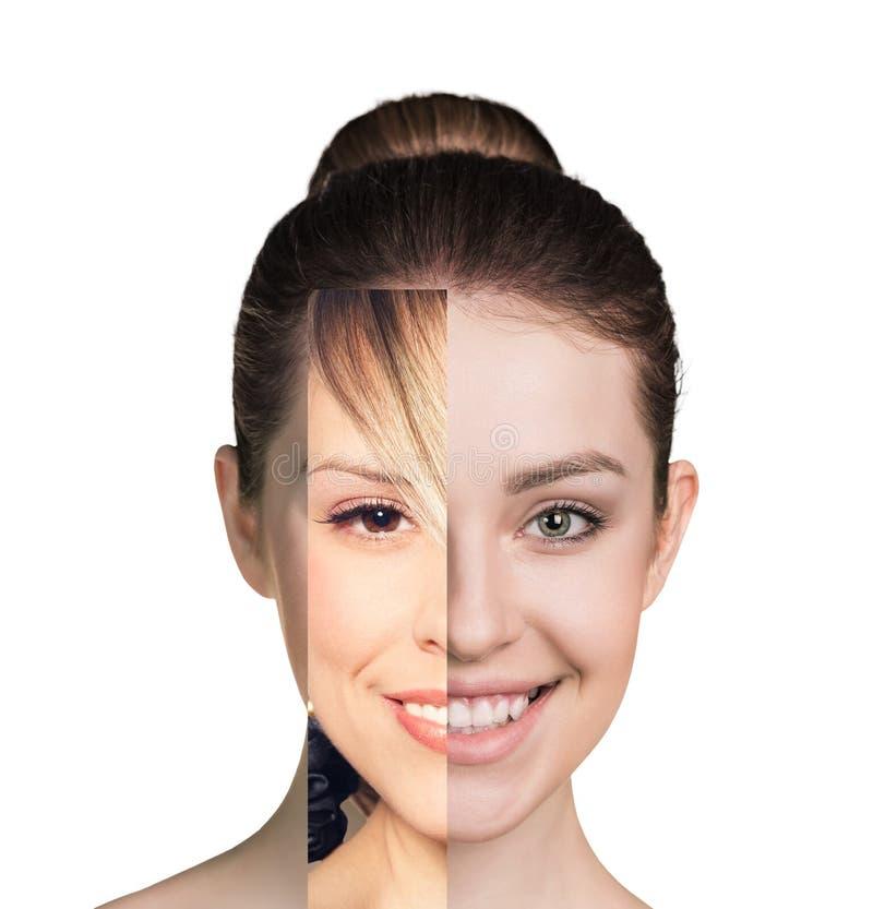 Menschliches weibliches Gesicht gemacht von einigem unterschiedlichem Teil stockfotos