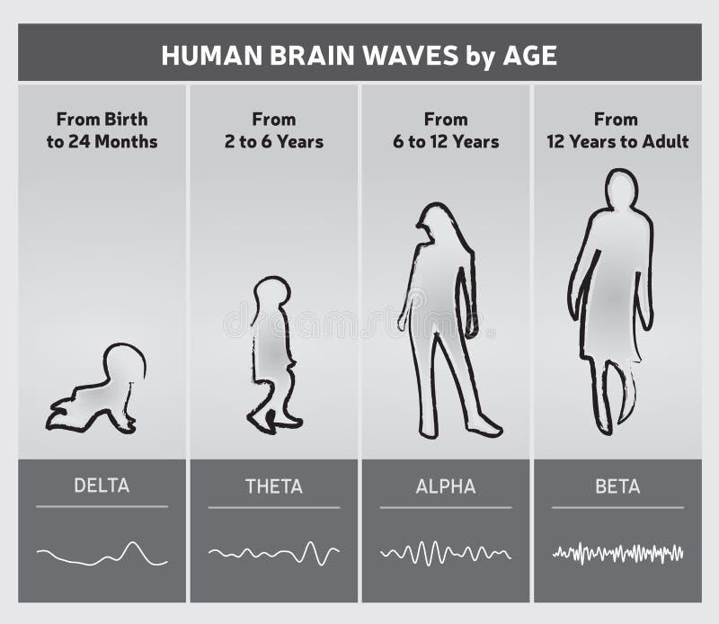 Menselijk Brain Waves door het Diagram van de Leeftijdsgrafiek - Mensensilhouetten royalty-vrije illustratie