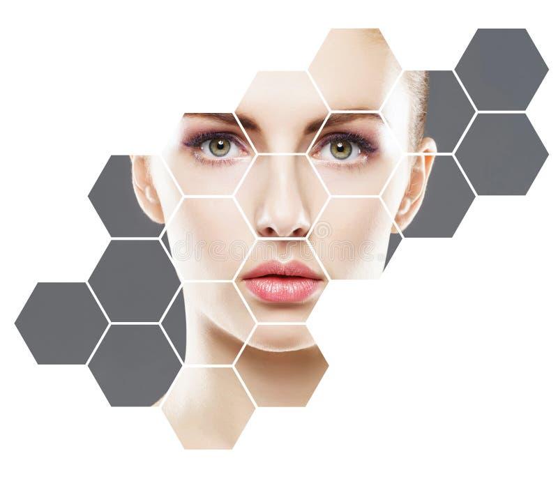 Menselijk gezicht in honingraat Jonge en gezonde vrouw in plastische chirurgie, geneeskunde, kuuroord en gezichts het opheffen co stock afbeeldingen
