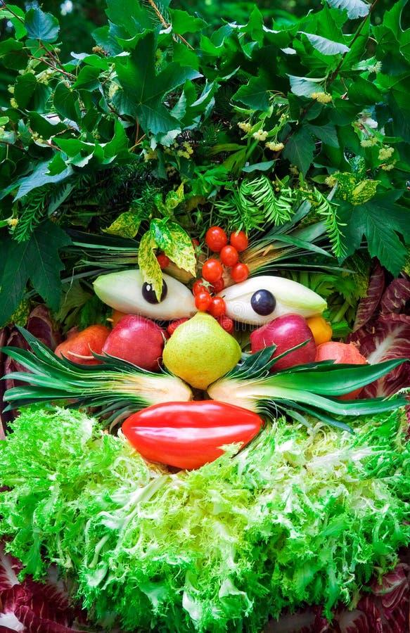 Menselijk gezicht van groenten. royalty-vrije stock fotografie