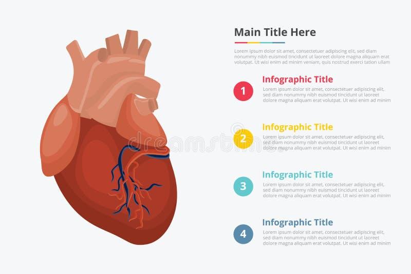 Menselijk hart infographic met één of andere beschrijving van de punttitel voor informatiemalplaatje - royalty-vrije illustratie